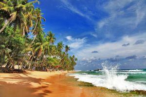Шри Ланка - земята на Буда и Рама, 20.11-29.11.2020г.